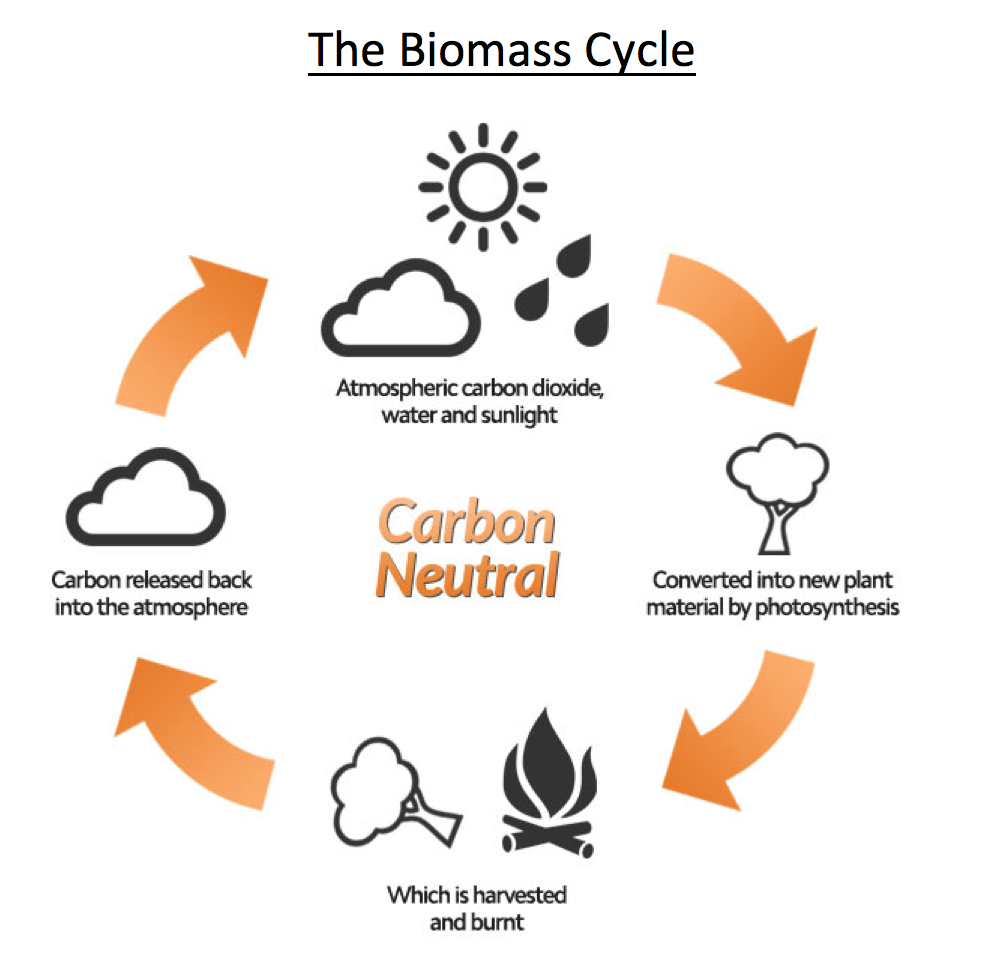 biomass_cycle.png